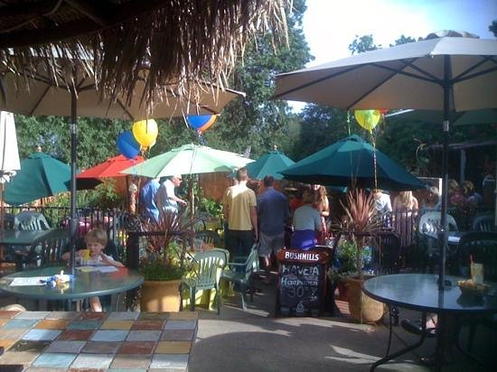 El Charro Mexican Dining:                   party on the patio