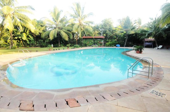 Swimming Pool Picture Of Sai Inn Resort Alibaug Tripadvisor