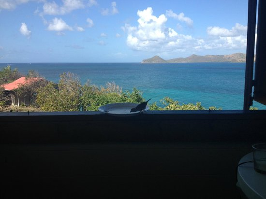 Hurricane Cove Bungalows:                   Friend at the window... and great views from Dove