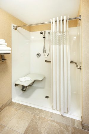 Hampton Inn Hendersonville: Accessible Bathroom