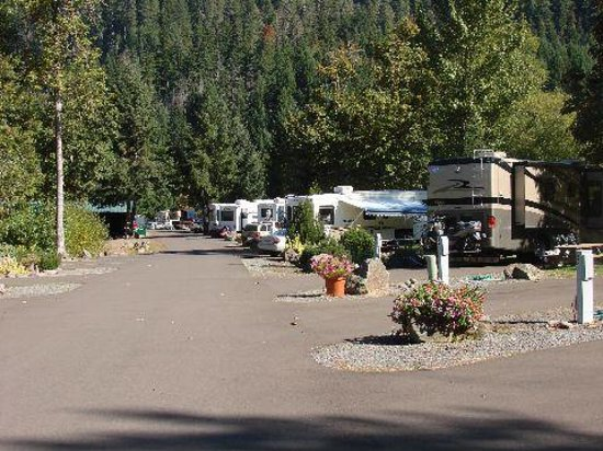 Photo of Casey's Riverside RV Park Westfir