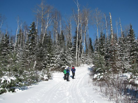 Skiing near Bearskin Lodge