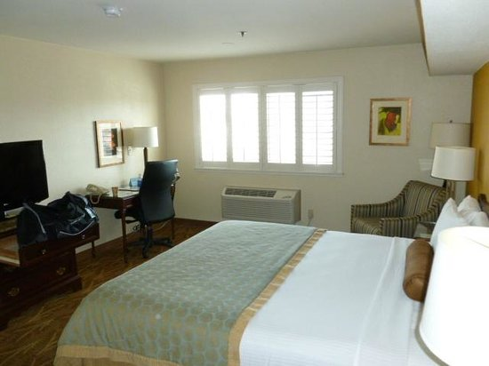 Governors Inn Hotel:                   room
