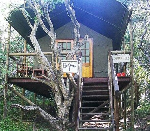 alojamientos bed and breakfasts en Ponta Malongane 
