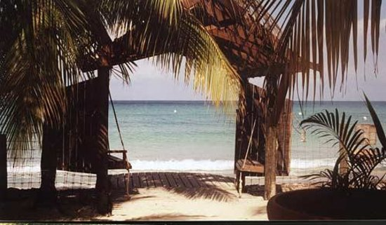Photo of Lazy Dayz Negril