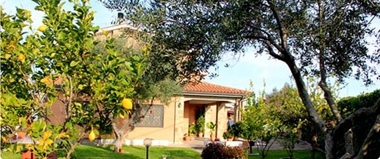 Remo di Roma B&B