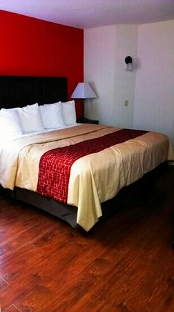 Red Roof Inn Austin - Round Rock:                   Nice clean room