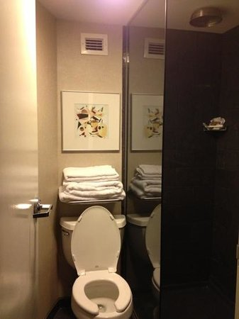Crowne Plaza Hotel:                                     a normal two bedroom bathroom