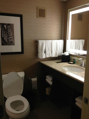 Sheraton Ann Arbor Hotel:                   Renovated Bathroom