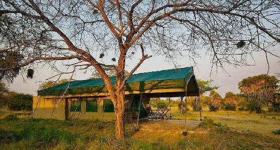 Lake Manze Tented Camp, Selous Game Reserve: Lake Manze - Tent