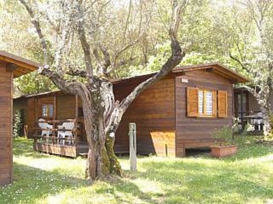 Photo of Camping Azzurro Bracciano