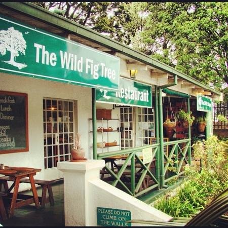 Photos of The Wild Fig Tree, Sabie