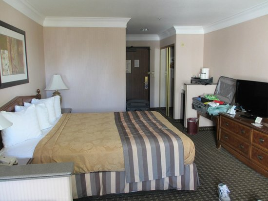 BEST WESTERN PLUS Suites Hotel:                   king size bed