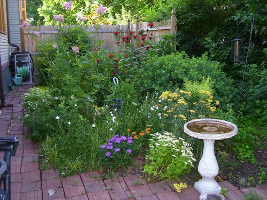 Lady Linden Bed and Breakfast: The Native Garden