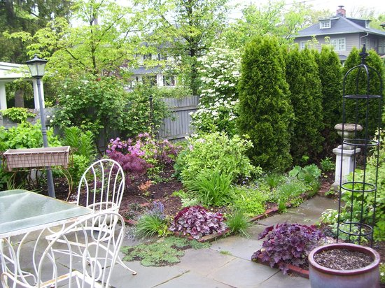 Lady Linden Bed and Breakfast: Patio Garden