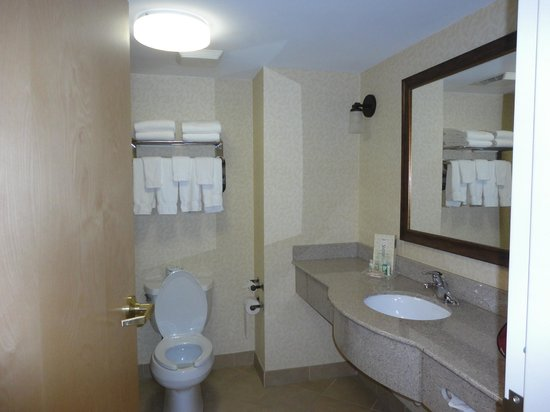Holiday Inn Hotel & Suites Asheville Downtown:                                                       Clean bathroom