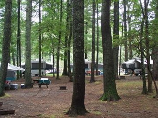 Raccoon Holler Campground