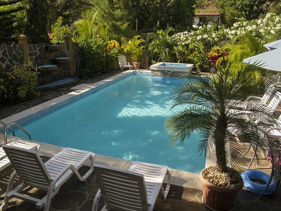 Coconut Lodge:                   Swimming pool and landscaping