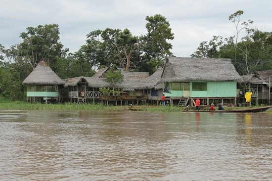 The Amazon Jungle Guide:                   The Lodge