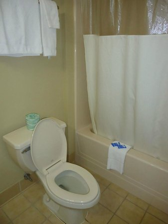 Motel 6 Harrisburg/Hershey:                   Motel 6 Harrisburg, toilet and shower, Feb 2013