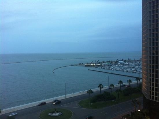 Omni Corpus Christi Hotel Bayfront Tower:                   View from my 12th floor balcony at dusk.
