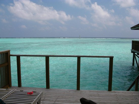 Meeru Island Resort & Spa:                   from villas