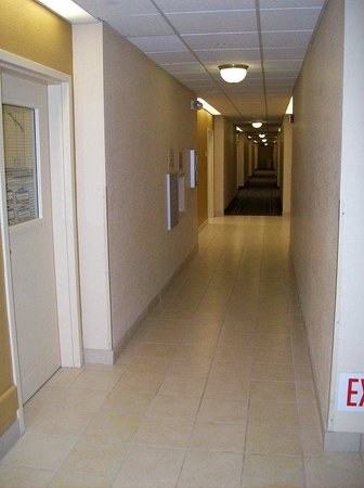 Candlewood Suites Orange County, Irvine Spectrum: Hallway