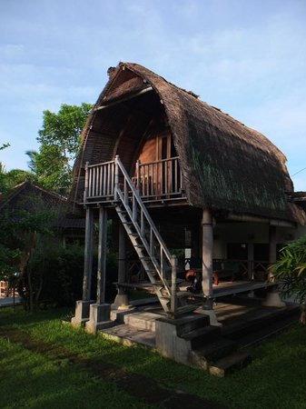 Kupu Kupu Bungalows:                   bungalow