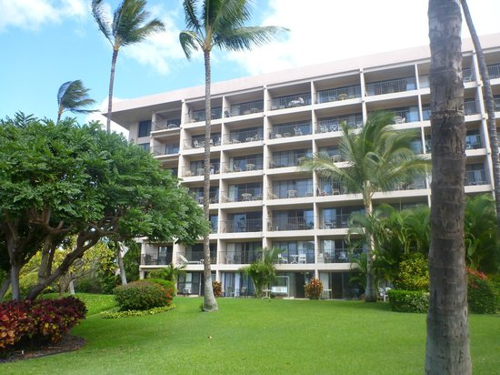 Kihei Akahi:                   View of the front of Building D