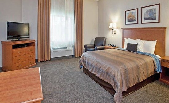 Candlewood Suites Northeast: Queen Studio Suite