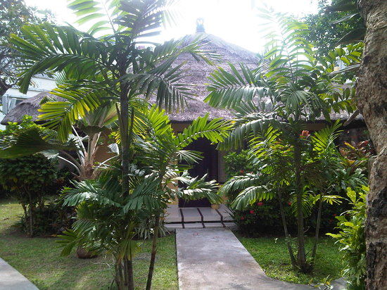 Puri Dalem Hotel:                   the cottage
