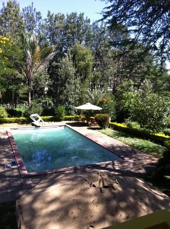 Milimani Backpackers & Safari Centre:                   pool