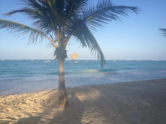 Riu Palace Punta Cana:                                     gorgeous morning