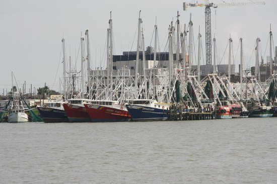 Cruise terminal galveston picture of port of galveston for Seawolf park fishing report