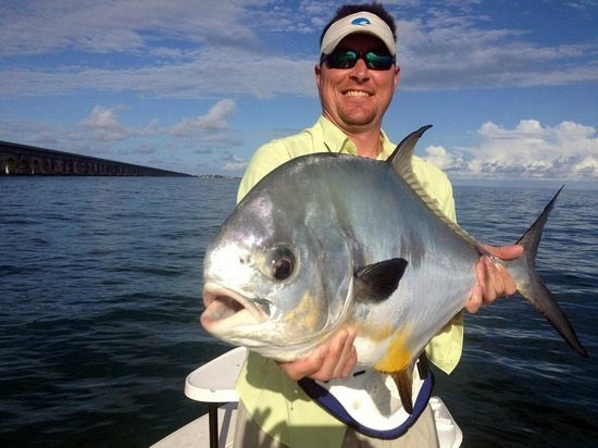 Permit picture of tarpon time fishing charters duck key for Duck key fishing charters