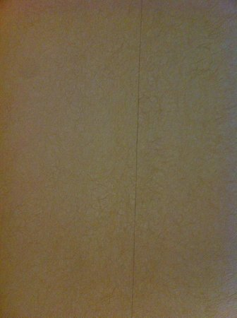 Point Plaza Suites and Conference Hotel:                   Wallpaper peeling