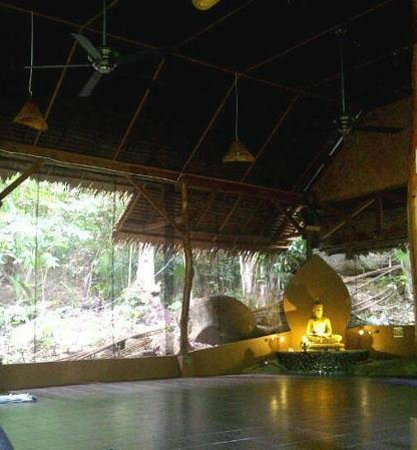 The Sanctuary Island Resort:                   Yoga Hall in the jungle