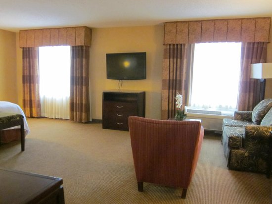 Hampton Inn & Suites San Antonio - Airport: Studio Suite