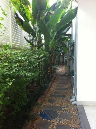 Baan Silom Soi 3: Boutique Accommodation: Small lovely garden at side of premises.