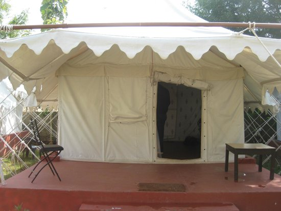 Jungle View Resort:                   Another tent