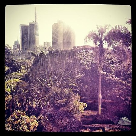 Nairobi Serena Hotel:                   Room view (4th floor)