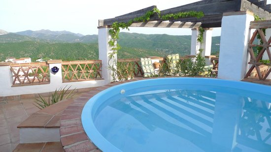 Hotel Los Castanos :                   Roof terrace and pool