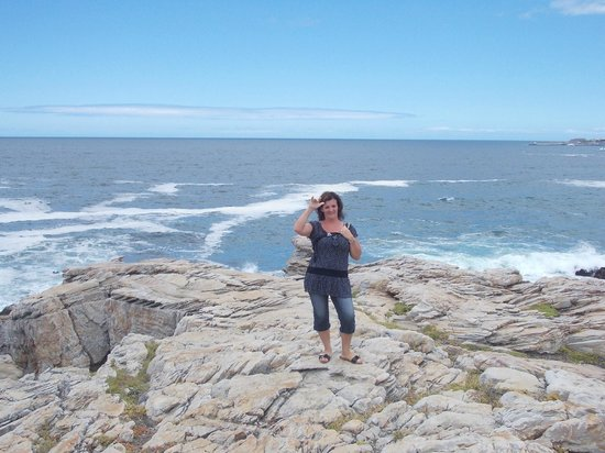Misty Waves Boutique Hotel Hermanus: An der bucht von hermanus
