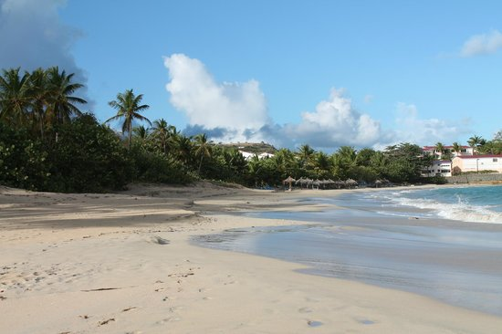 Antigua's Yepton Estate Cottages:                   Beach near the hotel just after sunrise - Coconut Beach