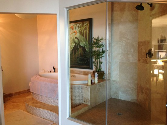 Puu Poa:                   You can see out to the private balcony/ocean from the glassed in shower.