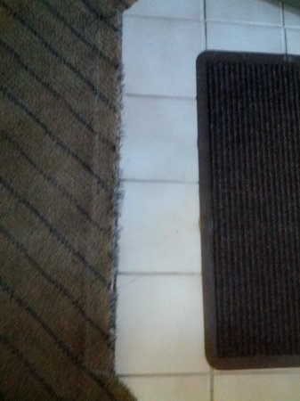 Quality Suites Buckhead Village :                   carpet frayed and in need of cleaning