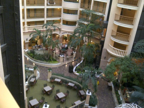Embassy Suites Hotel Orlando - International Drive / Convention Center:                   interior