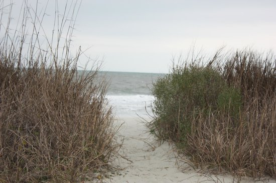BEST WESTERN PLUS Grand Strand Inn & Suites: Walk to the beach