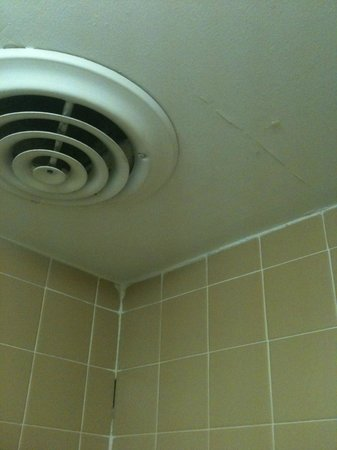 Days Inn Asheville Mall:                   cracked ceiling and more areas for the bugs to enter
