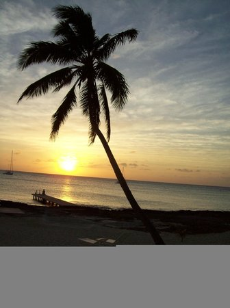 Harbour View Apartments and Studios:                   Sunset on the beach at Harbour View